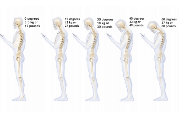 Weight on the Spine from Cell Phone Use